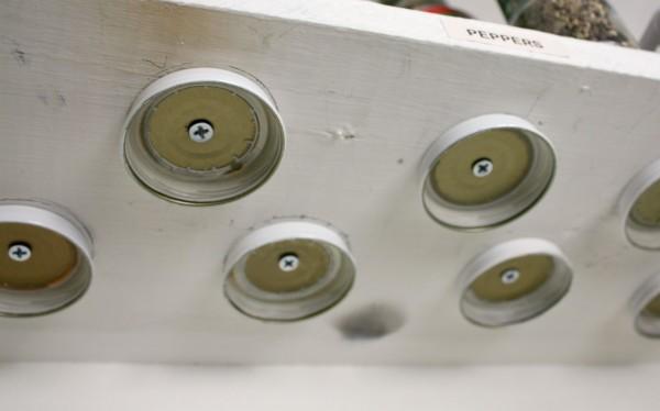 Wood screw lids 600x374