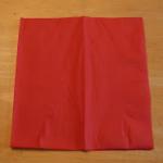 ナプキン折り方1