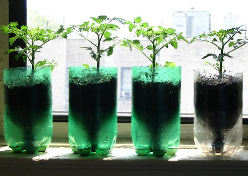 ペットボトルのリサイクルでプランターや花瓶の作り方