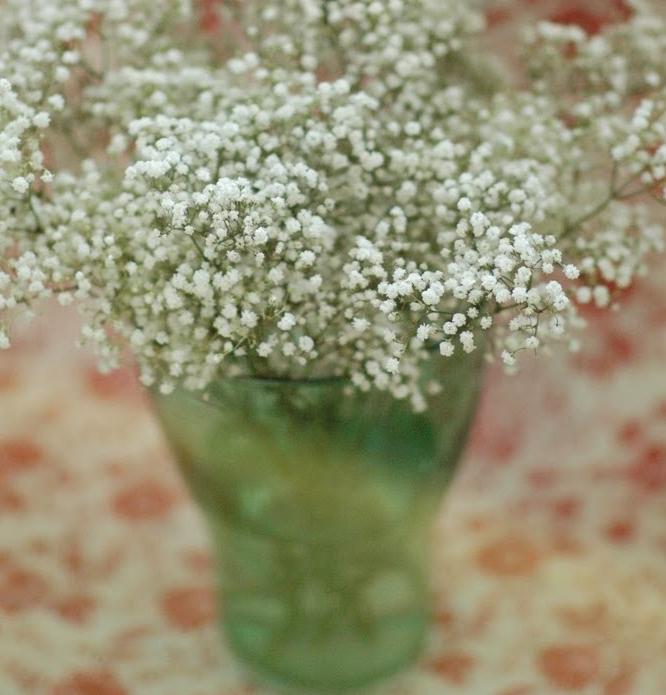 かすみ草の簡単飾り方
