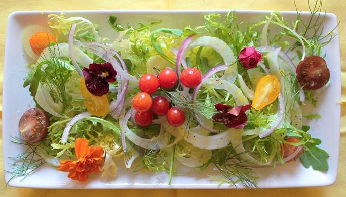 綺麗なサラダ盛りつけ例