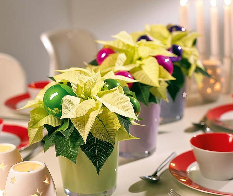 カラフルなクリスマステーブルコーディネート